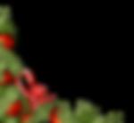 christmas-decorations-1814927_edited_edi