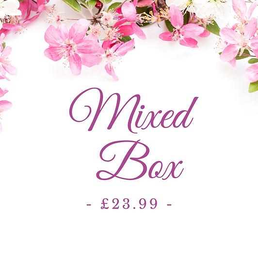 spring sale box
