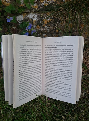 Montacute The Travelling Reader
