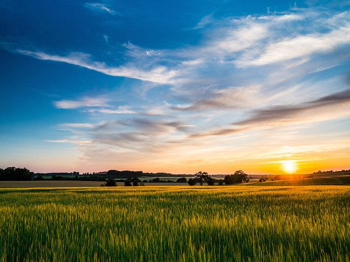 Canva - Sunset over arable farmland in B