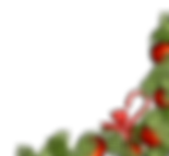 christmas-decorations-1814927_edited.png