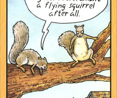 Attention Parachutists & Squirrels