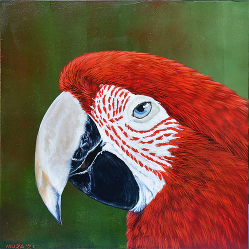 ACRYLIC PAINTING - Scarlet Macaw