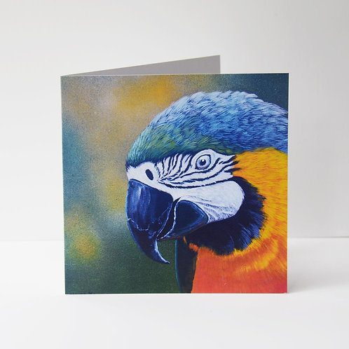 GREETING CARD - Blue & Gold Macaw 2