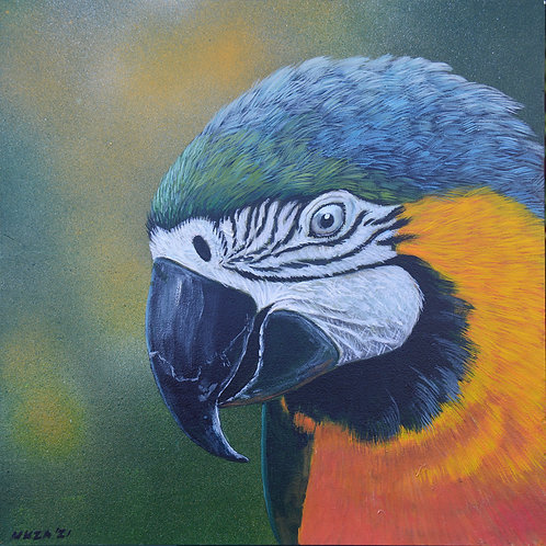 ACRYLIC PAINTING - Blue & Gold Macaw 1