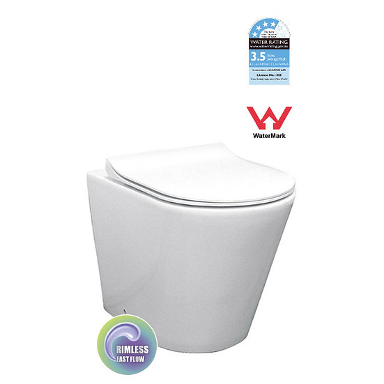Rimless Floor Pan with Geberit Package Cistern + Black ABS Push Plate Button