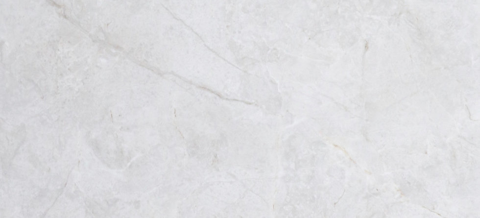 Light Grey Marble Look Tile