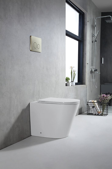 Zumi In Wall Faced Floor Pan with Stainless Steel Brushed Gold Flush Plate