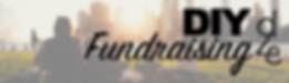 diy fund banner.png