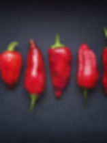 Red Chili Schoten