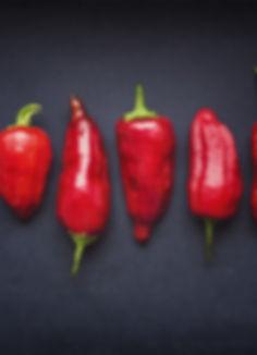 Red Chili Pods