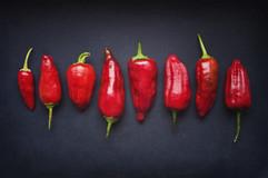 Dosettes de piment rouge