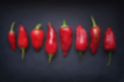 Pods Chili Red