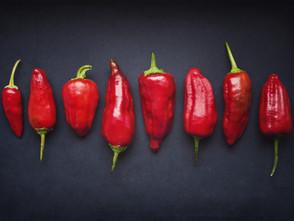 Wärmende Lebensmittel - Teil 1