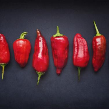 Pimentões Vermelhos, legumes ricos em vitamina C, vitamina A,  cálcio, ferro, fibras e fósforo.