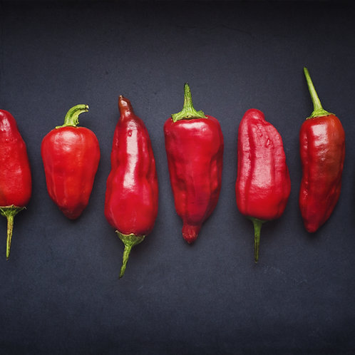 Chilli Sauce 1