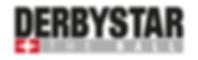 Logo Derbystar 1.PNG