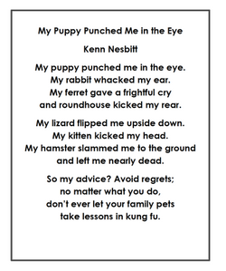 My Puppy Punched Me in the Eye