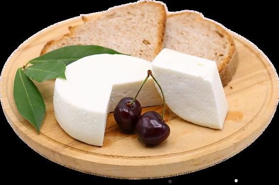 Primo sale di capra, formaggio fresco di capradell'azienda agricola La Capreria di Montegalda (VI)