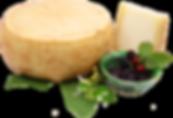 Mezzano di capra, formaggio di capra stagionato a latte crudo dell'azienda agricola La Capreria di Montegalda (VI)