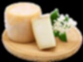 Botticella, formaggio di capra o pecora-capra dell'azienda agricola biologica La Capreria di Montegalda (VI)