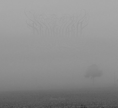 BROUILLARD - Brouillard