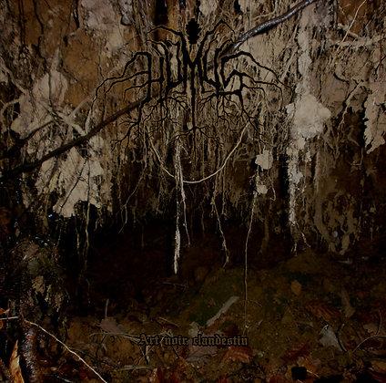 HUMUS - Art Noir Clandestin