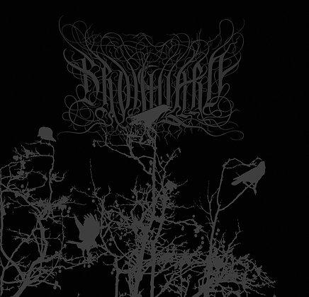 BROUILLARD - Brouillard (single)