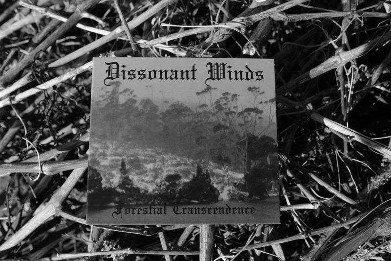 Dissonant Winds Digifile closed