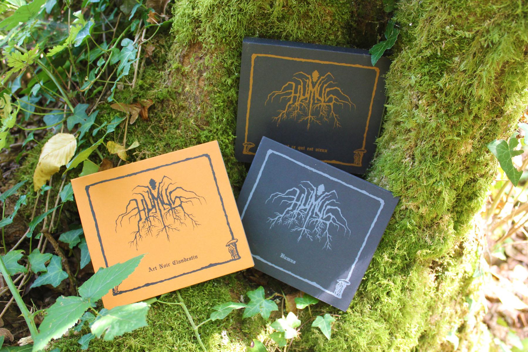 3 CD dans la mousse