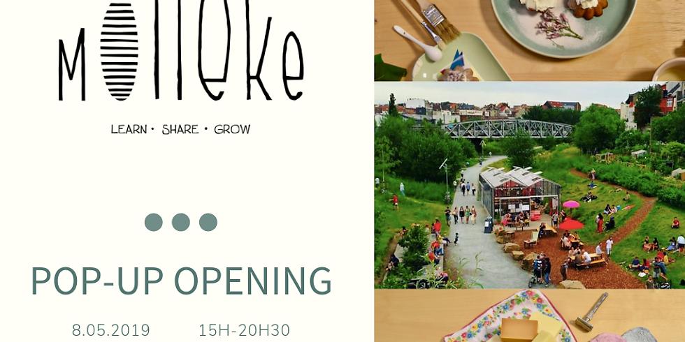 Pop-up d'ouverture de Molleke!