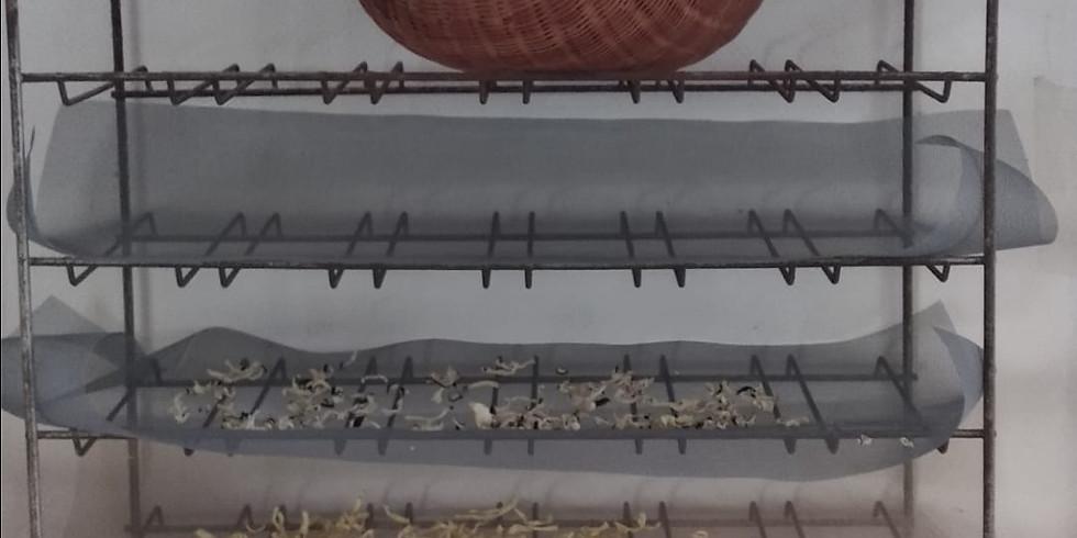 Atelier anti-gaspi: techniques de séchage et sels arômatisés