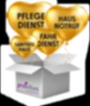 ballons_karton_provitus.png