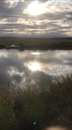 Best pond.png