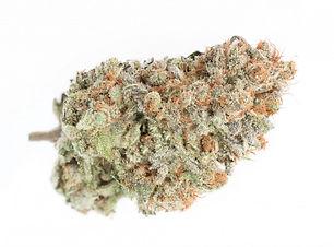 blueberry-dj-short-strain-cannabis-deliv
