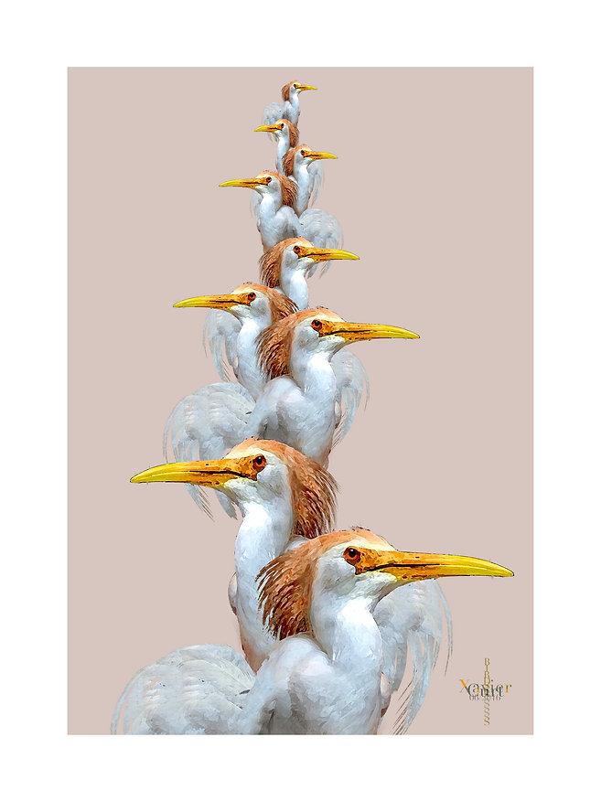 18x24_birds.jpg