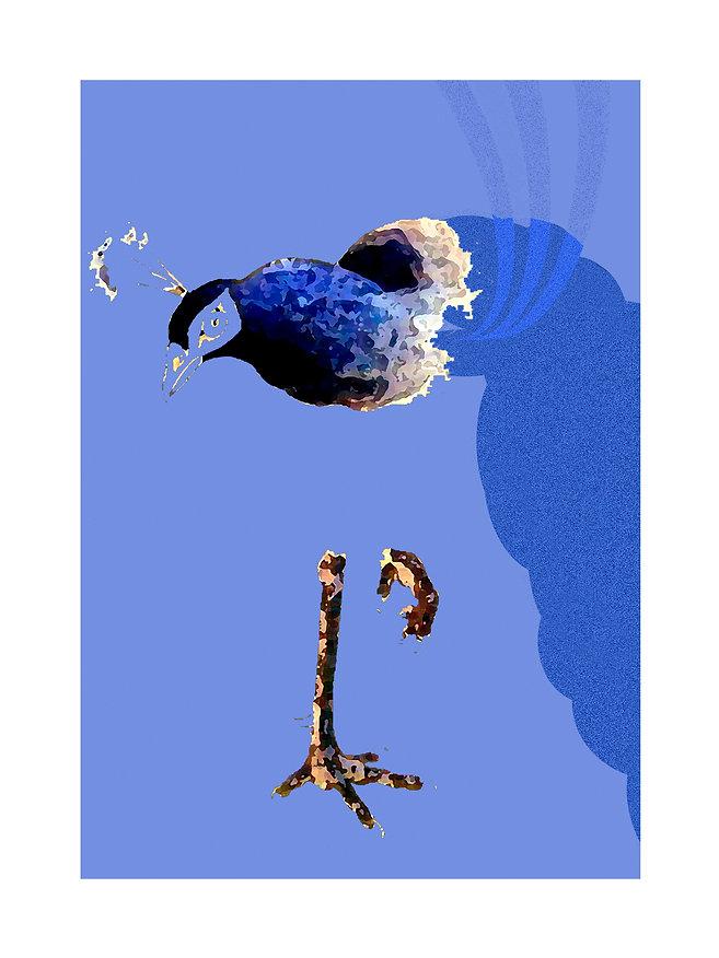18x24_paon-blue.jpg