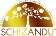 SCHIZANDU_logo_SMALL_5cee247a-891d-4cbd-