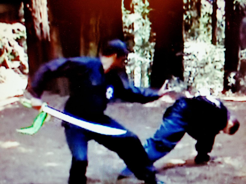 Hung Sing Choy Lee Fut Kung Fu