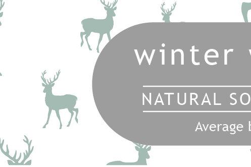 Winter Wonderland Small Dotty Tin