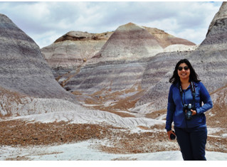 Petrified forest and Blue Mesa