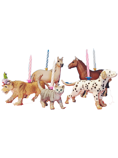 Animal Birthday Candle Holder