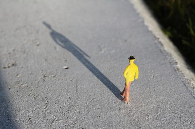 Macro Figure Shadow
