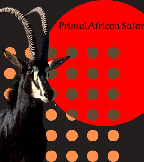 Primal African Safaris