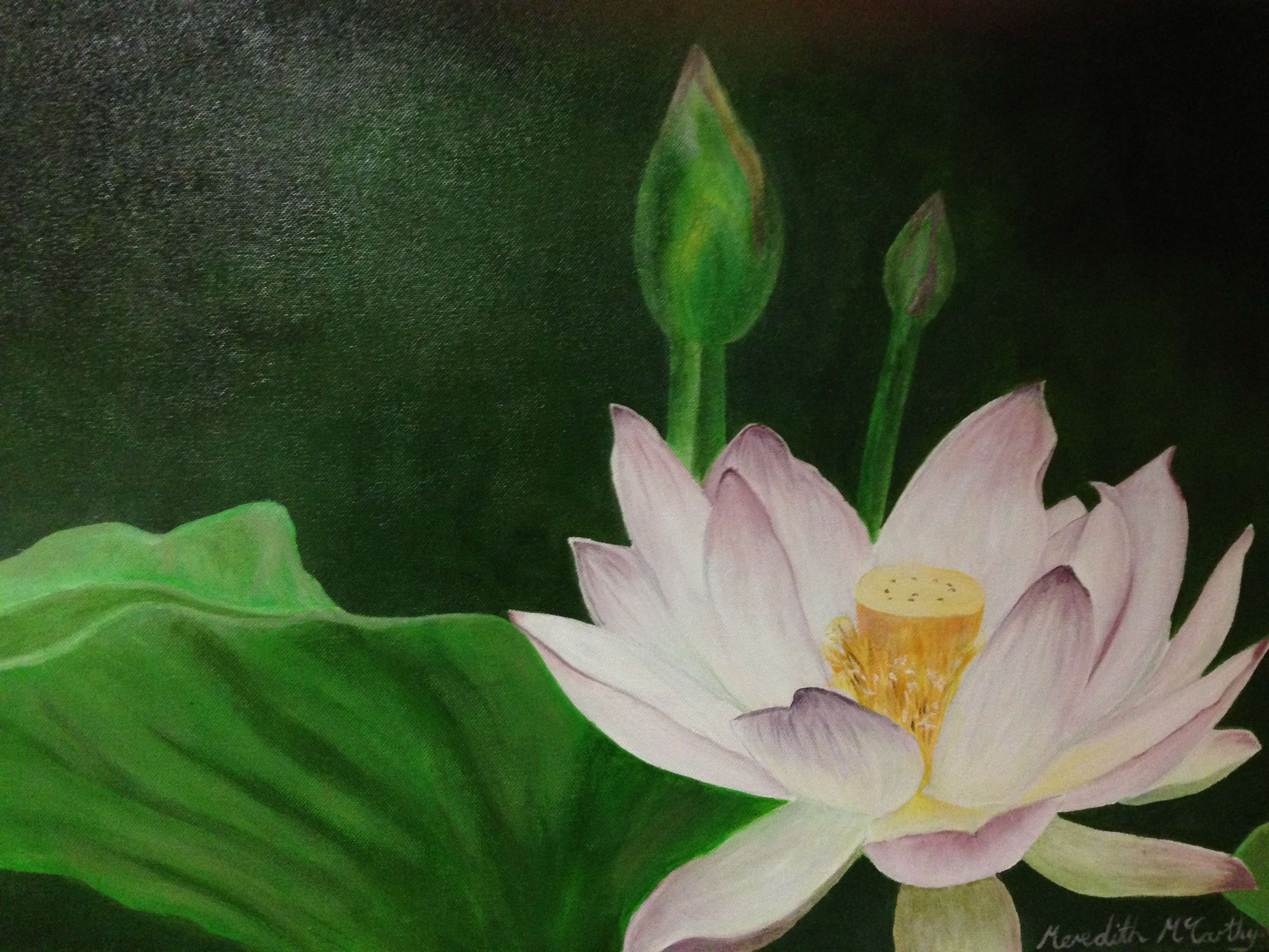 Lotus of enlightenment