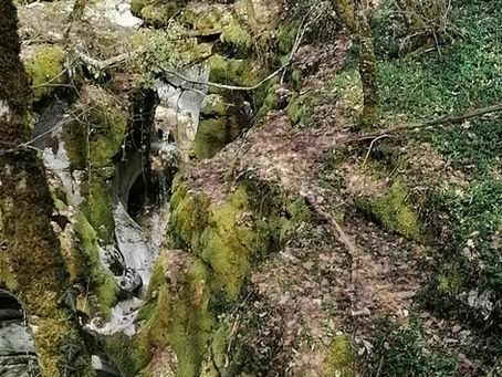 Le Pont des Tines Ruffieu