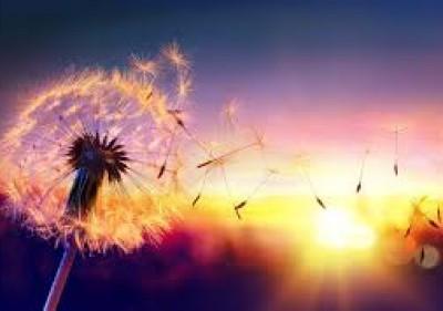 le souffle solaire et harmonisation énergétique