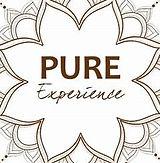 pure_expérience.jpg