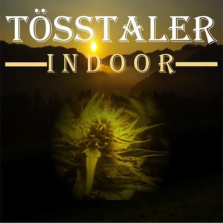 Tösstaler Indoor Logo New 2021.jpg