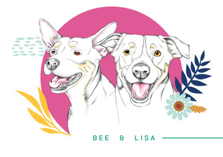 Ilustração de pet